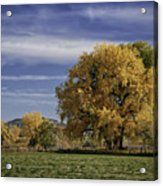 Belfry Fall Landscape 7 Acrylic Print by Roger Snyder