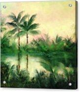 Belize River Acrylic Print