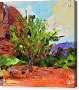 Sedona Pathway  Acrylic Print