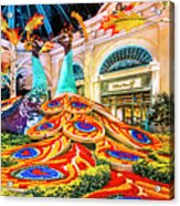 Bellagio Conservatory Fall Peacock Display Side View Wide 2 To 1 Ratio Acrylic Print
