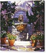 Bellagio Fountain Acrylic Print by David Lloyd Glover