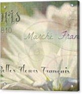 Belles Fleurs Acrylic Print