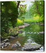 Below Drift Creek Falls Acrylic Print
