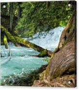 Below The Falls Acrylic Print