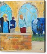 Belted Galloway Cows And People At Exeter Cathedral Acrylic Print