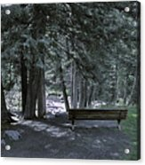 Bench By The Stream II Acrylic Print