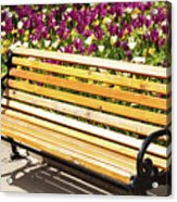 Bench In The Tulips Acrylic Print