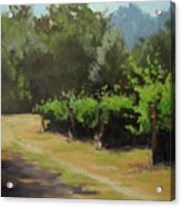 Bend In The Road Acrylic Print