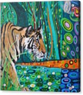 Bengal Tiger And Dragonfly Acrylic Print