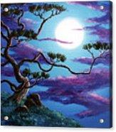 Bent Pine Tree At Moonrise Acrylic Print