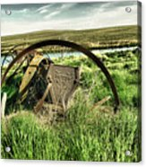 Bereft On The Grasslands T Acrylic Print