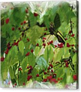 Berries And Leaves 51 Acrylic Print