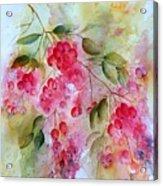 Berries Galore Acrylic Print