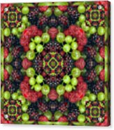Berry Good Acrylic Print by Bell And Todd