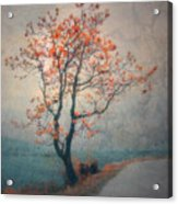 Between Seasons Acrylic Print