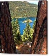 Between The Pines Acrylic Print