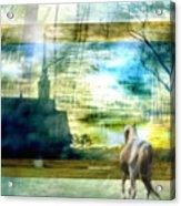 Beyond Acrylic Print