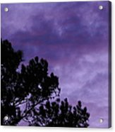 Beyond Dusk In The South Acrylic Print