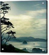 Beyond The Overlook Tree Acrylic Print