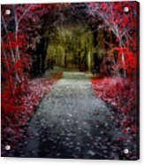 Beyond The Red Leaves Acrylic Print