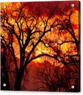 Beyond The Sunset  Acrylic Print
