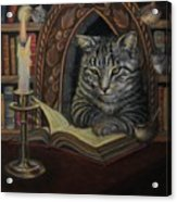Bibliocat Reads To His Friends Acrylic Print