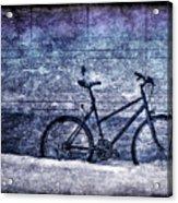 Bicycle Acrylic Print by Evelina Kremsdorf