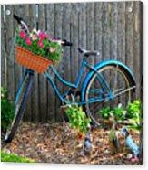 Bicycle Garden Acrylic Print