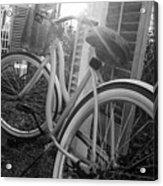 Bicycle In The Sun Acrylic Print