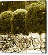 Bicycle Park 2 Acrylic Print