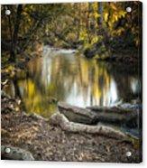 Bidwell Park Reflection Acrylic Print