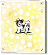 Biewer Terrier Banana Cream Acrylic Print