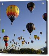 Big Balloons Acrylic Print