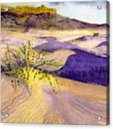 Big Bend Landscape II Acrylic Print