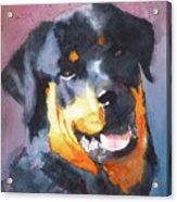 Big Bob Acrylic Print