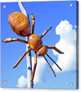 Big Bug Sculpture 1 Acrylic Print