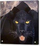 Big Cat IIi Acrylic Print