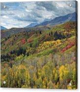 Big Cottonwood Canyon Fall Colors Acrylic Print