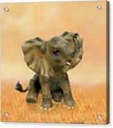 Beautiful African Baby Elephant Acrylic Print