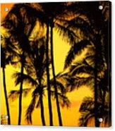 Big Island, View Acrylic Print