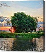 Big Marsh Sun Acrylic Print