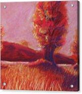Big Otter Creek - Sunset Acrylic Print