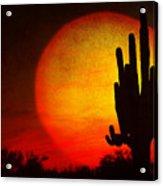 Big Saguaro Sunset Acrylic Print