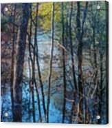 Big Thicket Water Reflection Acrylic Print