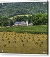 Big Valley Farm Acrylic Print
