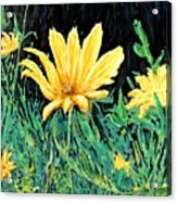 Big Yellow Acrylic Print