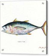 Bigeye Tuna Acrylic Print