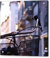 Bike Along The Arno Acrylic Print
