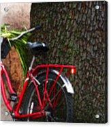 Bike Resting Acrylic Print