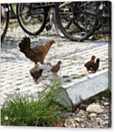 Biker Chicks Acrylic Print